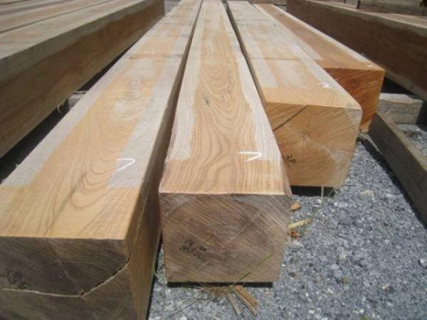 画像1: 500080 欅けやき 太角 角材 柱材 激安価格 販売 通販(長さ5m×24cm×24cmほか) (1)